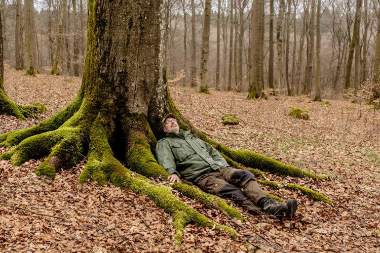Filmtip: The Hidden Life of Trees